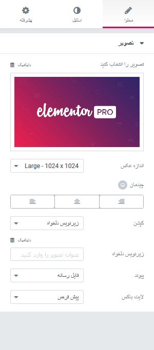 افزونه فارسی Elementor Pro
