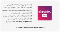 افزونهصفحه ساز Elementor Pro + قالب های آماده
