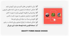 افزونه Gravity Forms Image Choices – استفاده از تصویر در گرویتی فرم